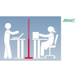 PECAUT - Système de...